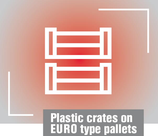 Plastic-crates-on–EURO-type-pallets